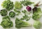 egészséges salátafélék