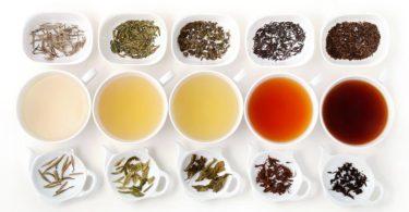 Egészséges teafélék